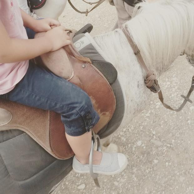 poney ranch six fours janas