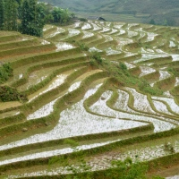 L'Asie du Sud avec des enfants : climat, nourriture, petites galères...