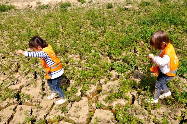 enfants marchant dans la vase sechée du lac de guerledan