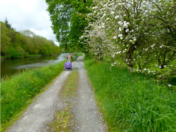 canal nantes a brest velos et arbres en fleurs