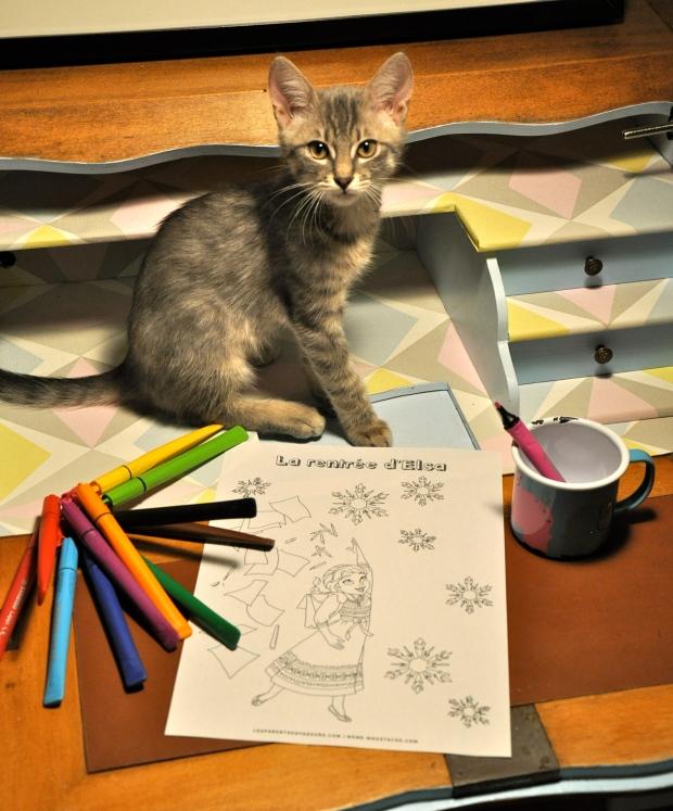 coloriage gratuit reine des neiges elsa rentrée des classes à imprimer