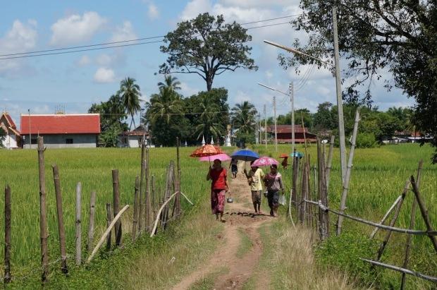 villageaois laos avec ombrelles parapluies