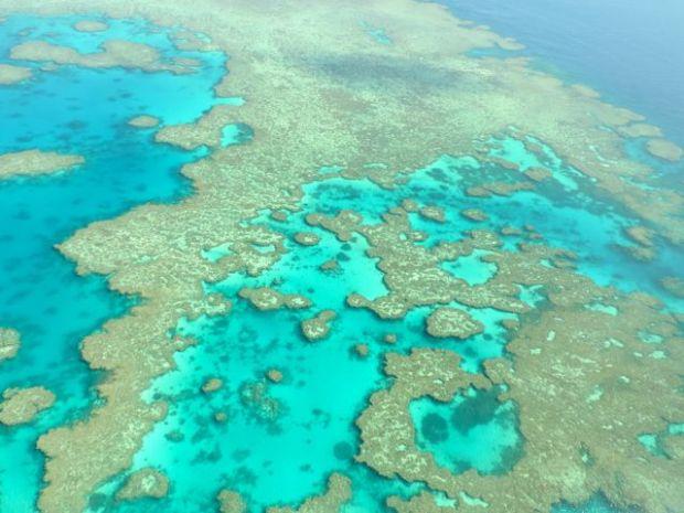 Survol de la barrière de corail, Australie