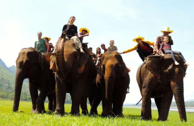Centre des éléphants, Thaïlande