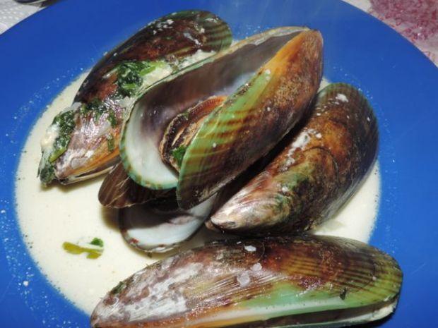 Green line mussels, Nouvelle-Zélande