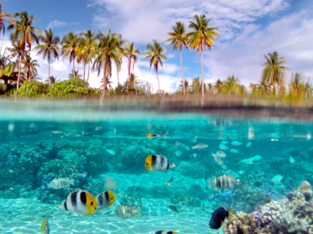vue su et sur aquatique Raiatea, une des îles Sous-le-Vent dans l'archipel de la Société, Polynésie française