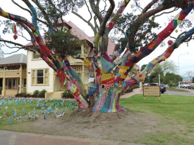 arbre décoré rotorua nouvelle zelande