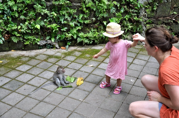 bébé singe monkey forest ubud