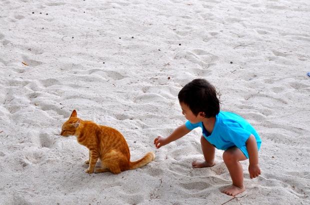 bébé plage gili joue avec queue du chat