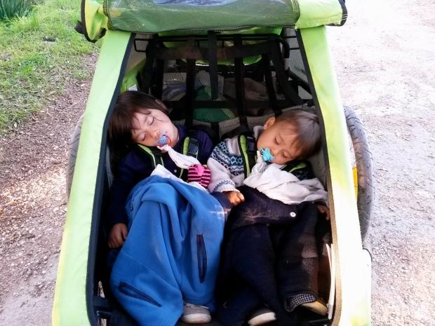 2 enfants dorment dans une cariole à vélo croozer duo for 2
