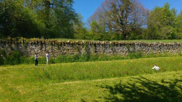 cueillette fleurs des champs maison éclusière canal du nivernais