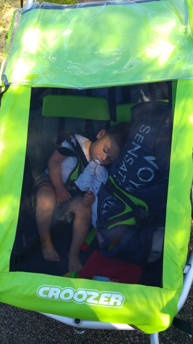 bébé dort dans une cariole à vélo croozer