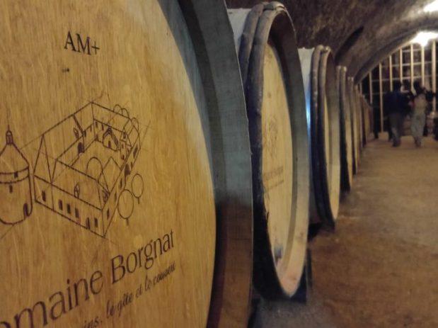 tonneaux de vin cave domaine borgnat
