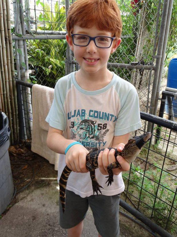 Everglades - Homestead, ferme des alligators avec des enfants