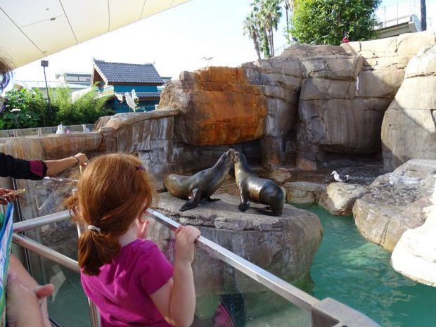 San Diego Seaworld avec des enfants