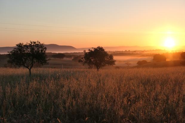 lever de soleil Bivouac Alentejo - voyage a velo avec des enfants Portugal nature
